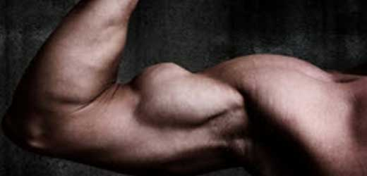 The faster you repair your muscle, the faster you can have guns like these!