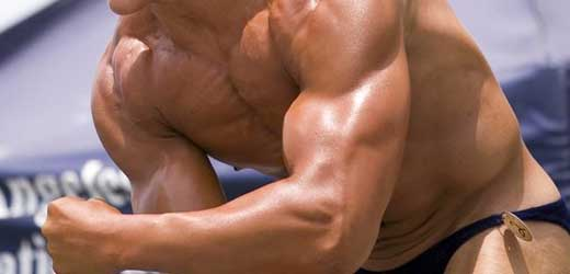 The muscle you want to build!
