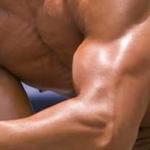 Workout Program for Mass Gain