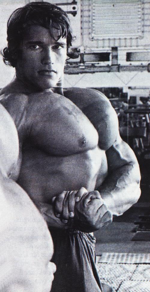 Arnold-Schwarzenegger-Giant-Pectorals