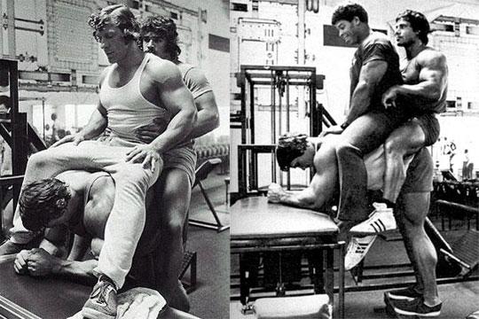 Donkey Calf Raises Arnold