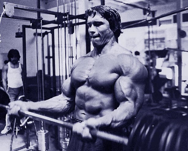 arnold-barbell-curl