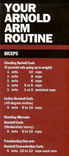 arnold original routine