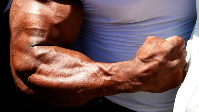 big forearm muscles