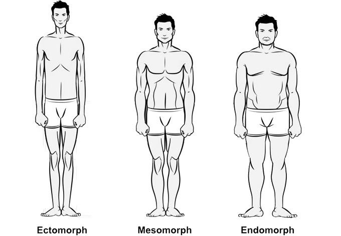 somatic body types